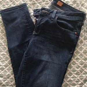Pilcro Stet Jeans in darkish blue wash